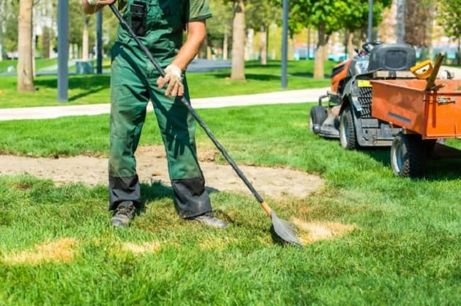How to remove old grass