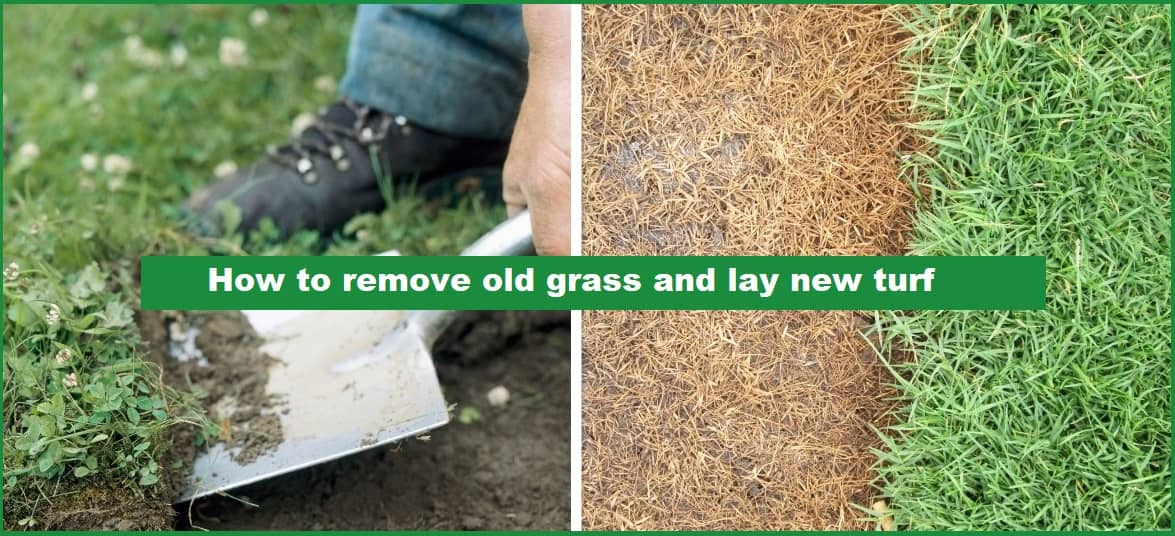 How to remove old grass and lay new turf