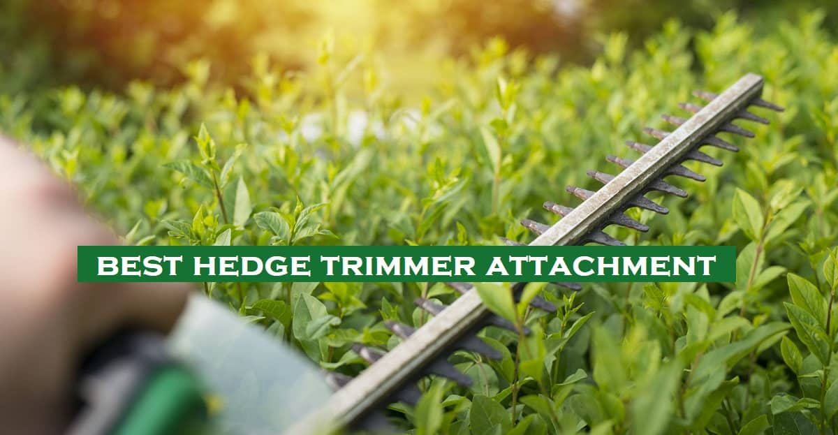 best hedge trimmer attachment