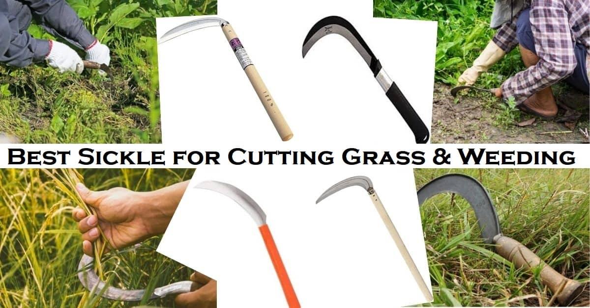 Best Sickle for Cutting Grass & Weeding