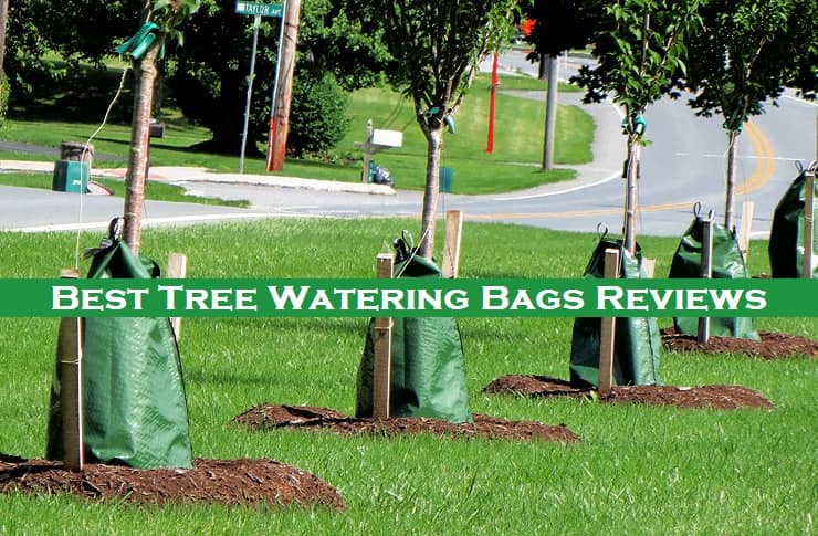 Best Tree Watering Bags Reviews