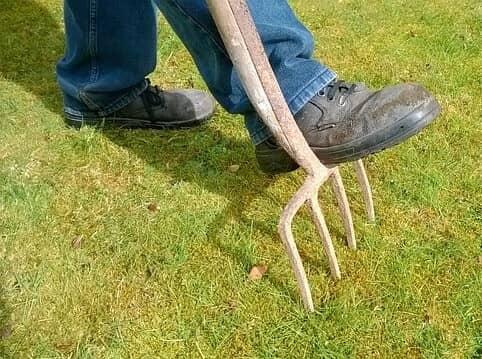 lawn aerator fork