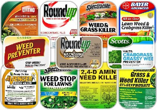types of weed killer