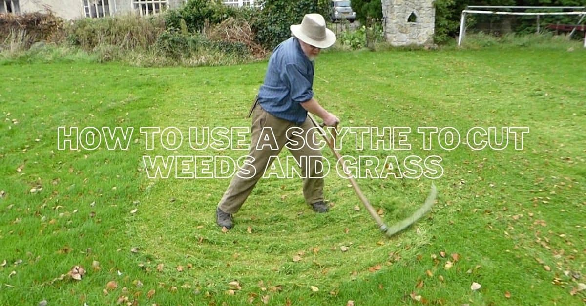 How to use a scythe to cut weeds and grass