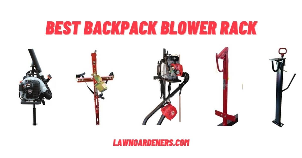 best backpack blower racks